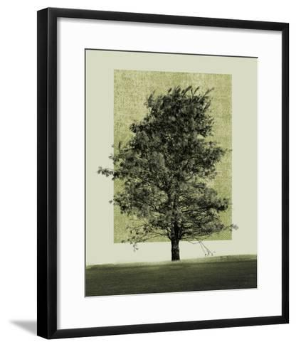 Natures Shapes II-Harold Silverman-Framed Art Print