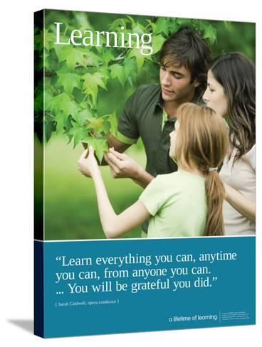 Learning--Stretched Canvas Print