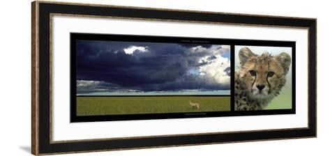 Cheetah and Storm-Michel & Christine Denis-Huot-Framed Art Print