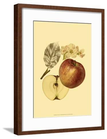 Ripe for Harvest I-Heinrich Pfeiffer-Framed Art Print