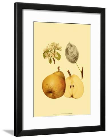 Ripe for Harvest II-Heinrich Pfeiffer-Framed Art Print
