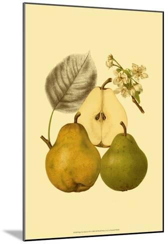 Ripe for Harvest III-Heinrich Pfeiifer-Mounted Art Print
