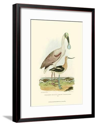 Roseate Spoonbill-Alexander Wilson-Framed Art Print