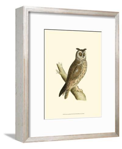 Long Eared Owl-Reverend Francis O^ Morris-Framed Art Print