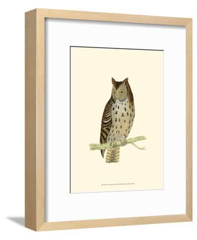 Mottled Owl-Reverend Francis O^ Morris-Framed Art Print