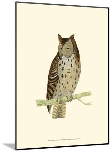 Mottled Owl-Reverend Francis O^ Morris-Mounted Art Print