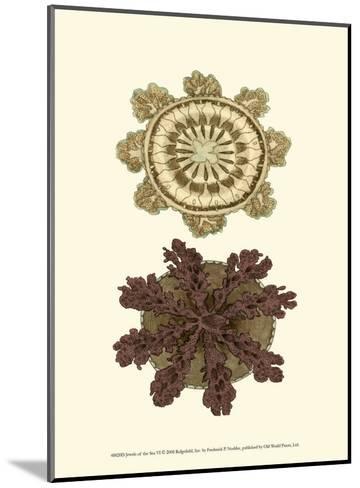 Jewels of the Sea VI-Frederick P^ Nodder-Mounted Art Print