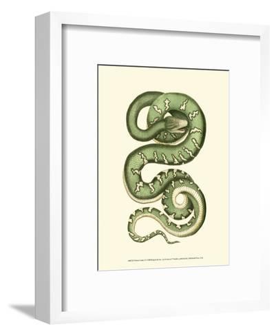 Vibrant Snake I-Frederick P^ Nodder-Framed Art Print