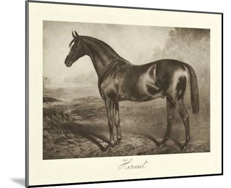 Hermit-Clarence Hailey-Mounted Premium Giclee Print