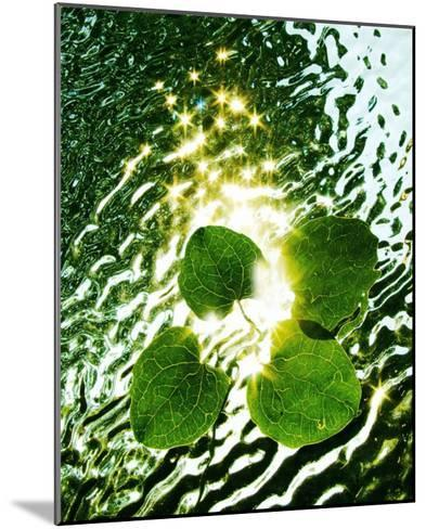 Floating Light-Leonard Morris-Mounted Giclee Print