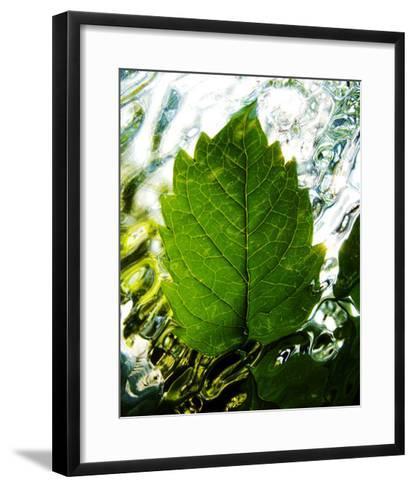 Rising-Leonard Morris-Framed Art Print