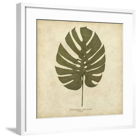Windowleaf-Becky Davis-Framed Art Print
