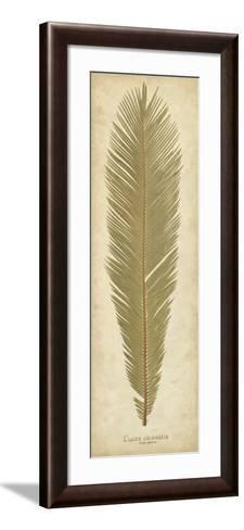 Sago Palm II-Becky Davis-Framed Art Print