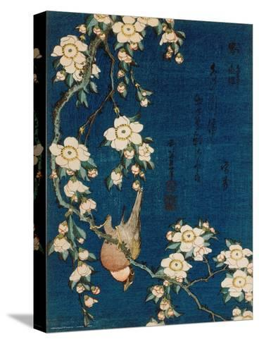 Goldfinch and Cherry Tree, c.1834-Katsushika Hokusai-Stretched Canvas Print