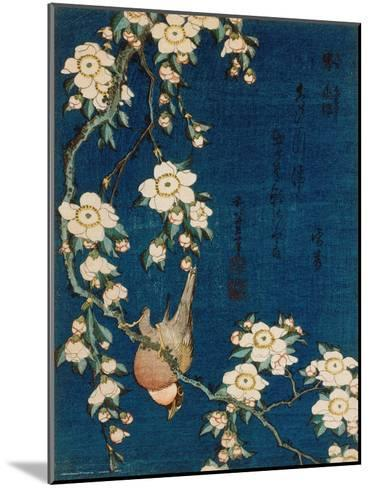 Goldfinch and Cherry Tree, c.1834-Katsushika Hokusai-Mounted Art Print