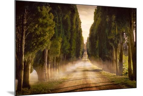 Cypress Lined Road II, Siena Tuscany-Jimmy Williams-Mounted Art Print