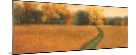 Path to the Woods-David Wander-Mounted Art Print