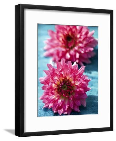 Dahlias-Laurence Mouton-Framed Art Print
