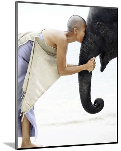 Nose to Nose, Thailand-David Trood-Mounted Art Print