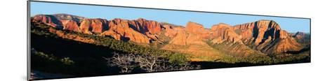 Zion National Park, Kolob Canyons-James Blakeway-Mounted Art Print