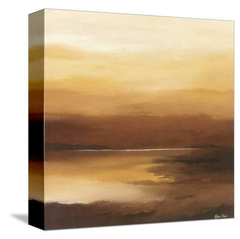 Evening Sky II-Hans Paus-Stretched Canvas Print