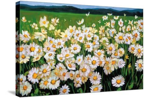 I Love Daisies-Liliane Fournier-Stretched Canvas Print