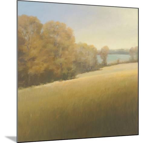 Distant Lake-Stephen Bach-Mounted Art Print