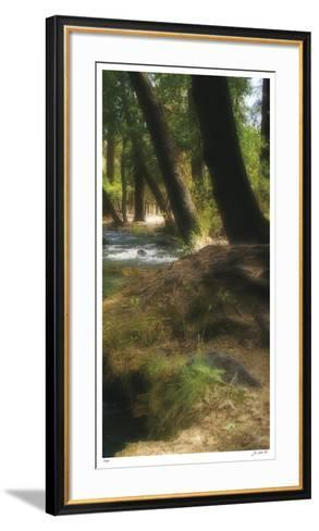 Serenity Stream III-Joy Doherty-Framed Art Print