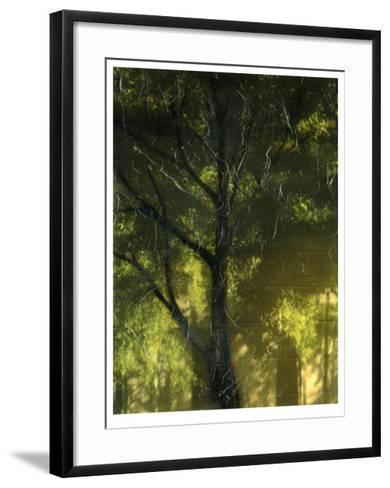 Shaded Reflection I-Jennifer Goldberger-Framed Art Print