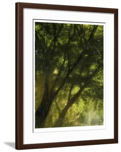 Shaded Reflection II-Jennifer Goldberger-Framed Art Print