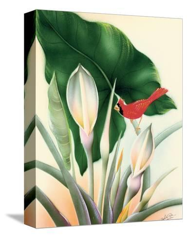 Hawaiian Red Cardinal, c.1940s-Frank Oda-Stretched Canvas Print