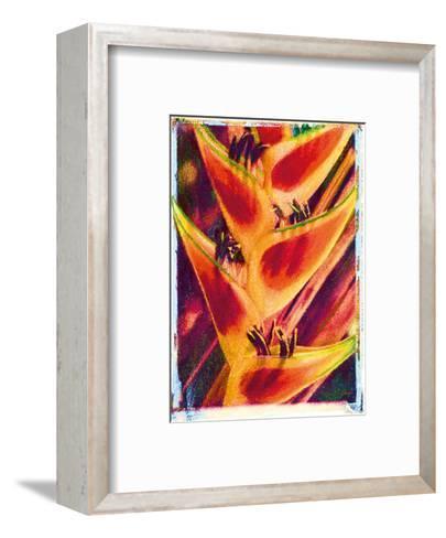 Hawaiian Heliconia-Joanne Bolton-Framed Art Print