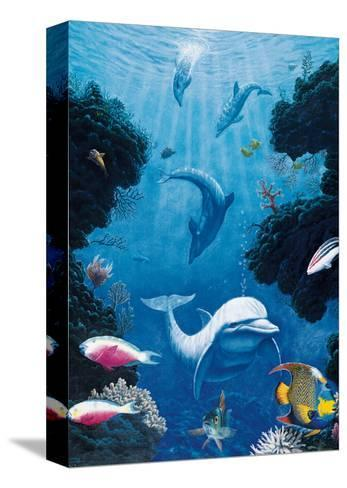 Dolphin Smiles-Andrew Annenberg-Stretched Canvas Print