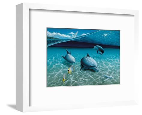 The Chase, Hawaiian Spinner Dolphins-Mark Mackay-Framed Art Print