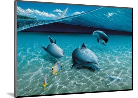 The Chase, Hawaiian Spinner Dolphins-Mark Mackay-Mounted Art Print