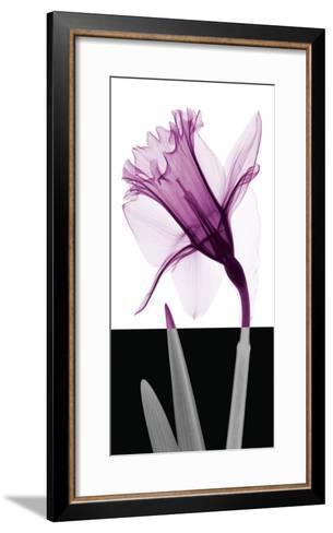 Stem IV-Steven N^ Meyers-Framed Art Print