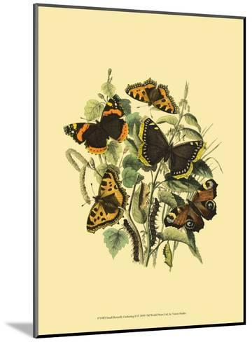 Small Butterfly Gathering II--Mounted Art Print