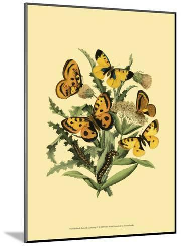 Small Butterfly Gathering IV--Mounted Art Print