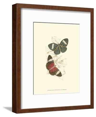 Butterflies I-Sir William Jardine-Framed Art Print