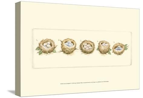 Life of a Songbird V-Nancy Shumaker Pallan-Stretched Canvas Print