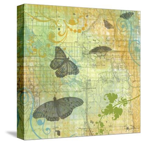 Butterflies I-Jan Weiss-Stretched Canvas Print