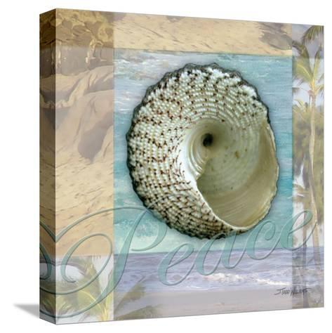 Peace Shell-Todd Williams-Stretched Canvas Print