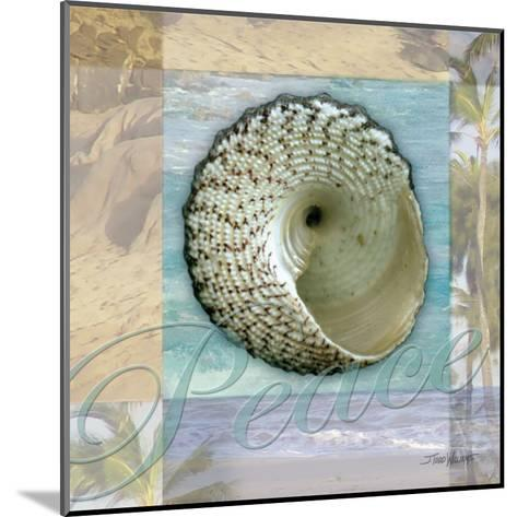 Peace Shell-Todd Williams-Mounted Art Print
