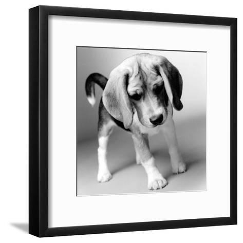 Georgia-Amanda Jones-Framed Art Print