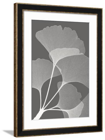 Ginkgos II-Steven N^ Meyers-Framed Art Print