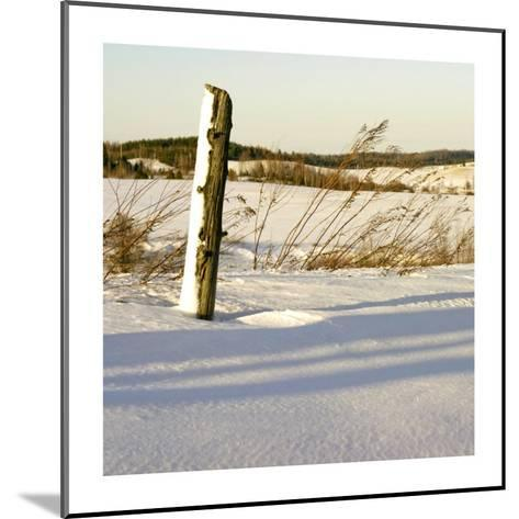 Country Snow I-Jean-Fran?ois Dupuis-Mounted Art Print