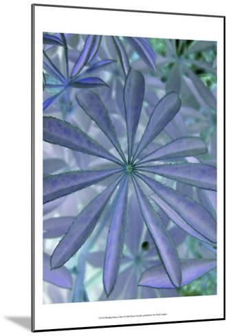 Woodland Plants in Blue I-Sharon Chandler-Mounted Art Print