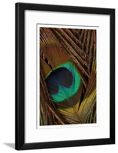 Peacock Feathers II--Framed Art Print