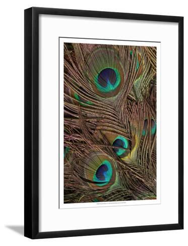Peacock Feathers IV--Framed Art Print