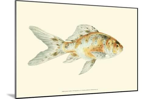 Speckled Goldfish-S^ Matsubara-Mounted Art Print